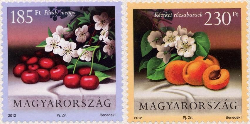 Cultivated Flora of Hungary: Fruit 2012