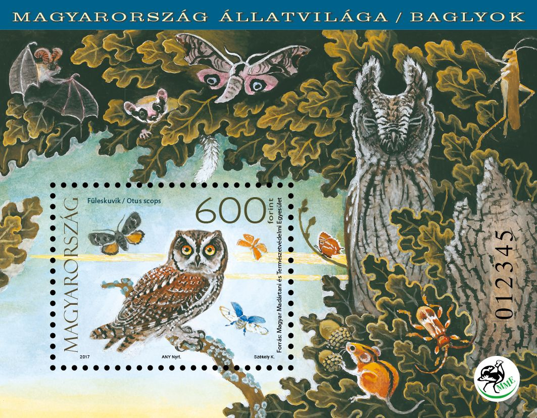 Fauna of Hungary: Owls - block
