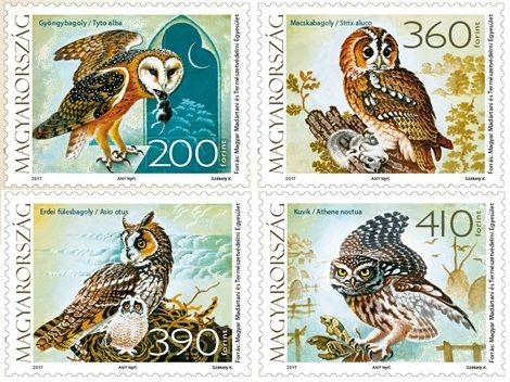 Fauna of Hungary: Owls