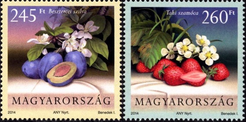 Cultivated Flora of Hungary: fruit