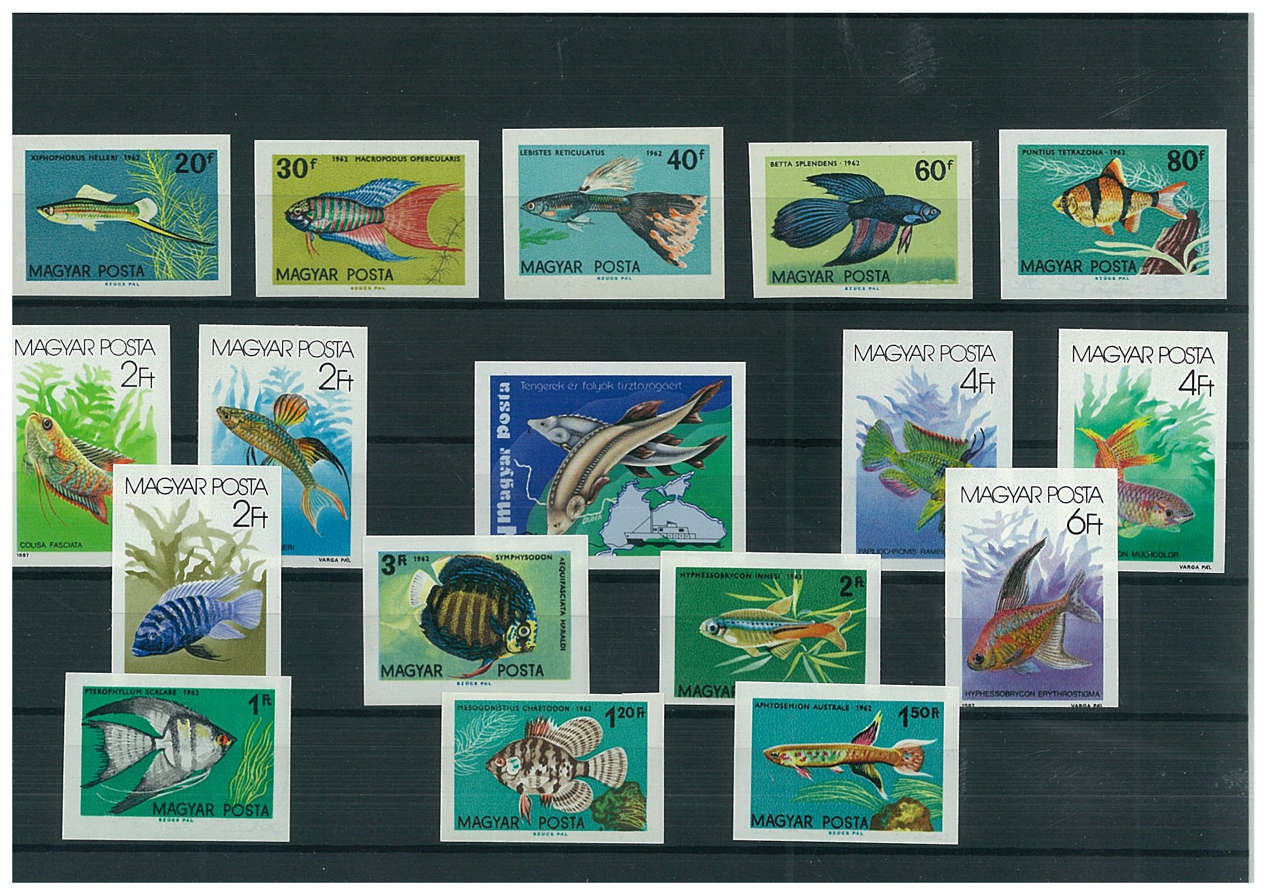Imperforated thematic sets -Fish